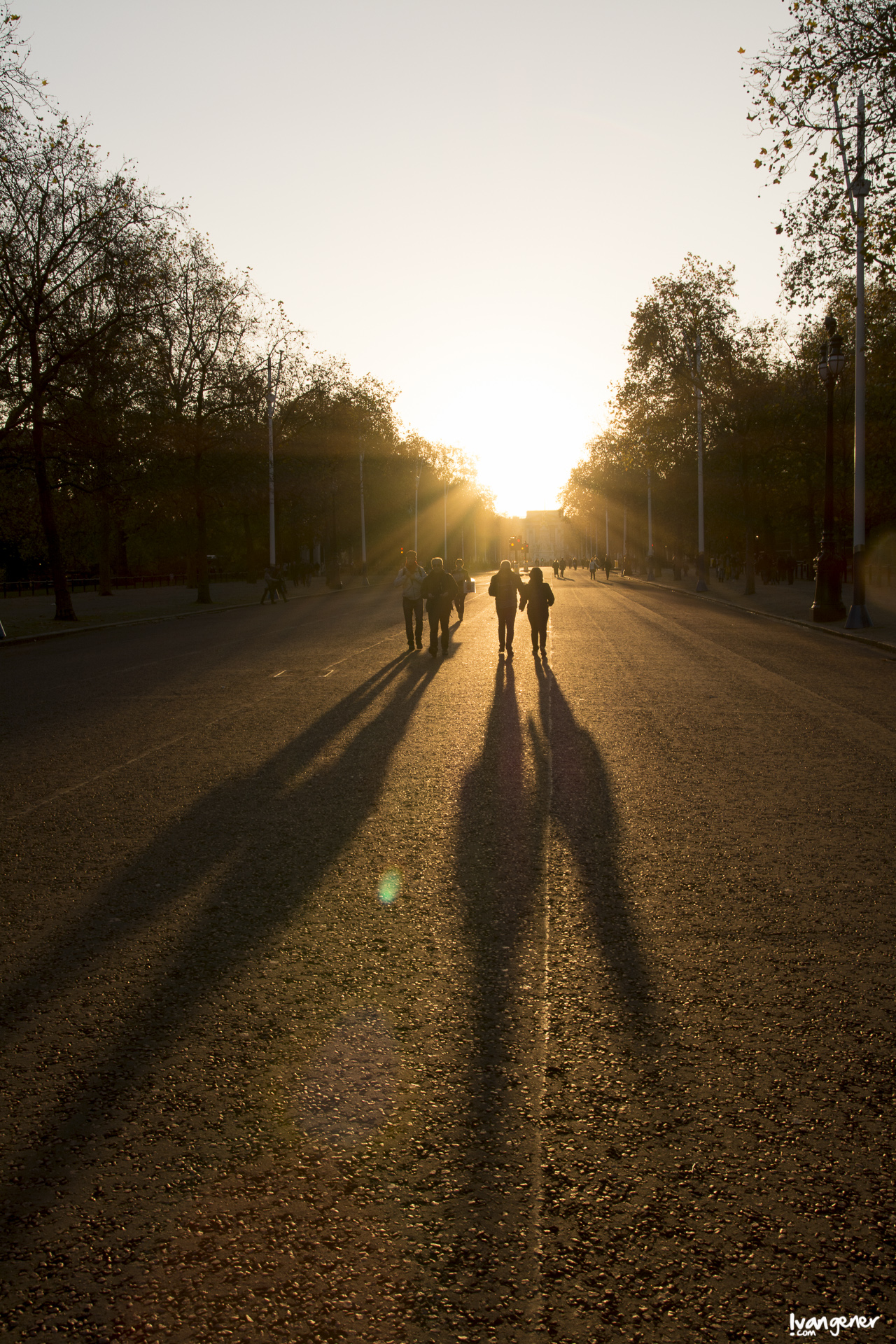 "08/11/2014 – Buckingham Palace, London. ""Real shadows""."